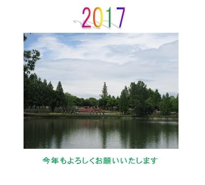 2017netp .jpg